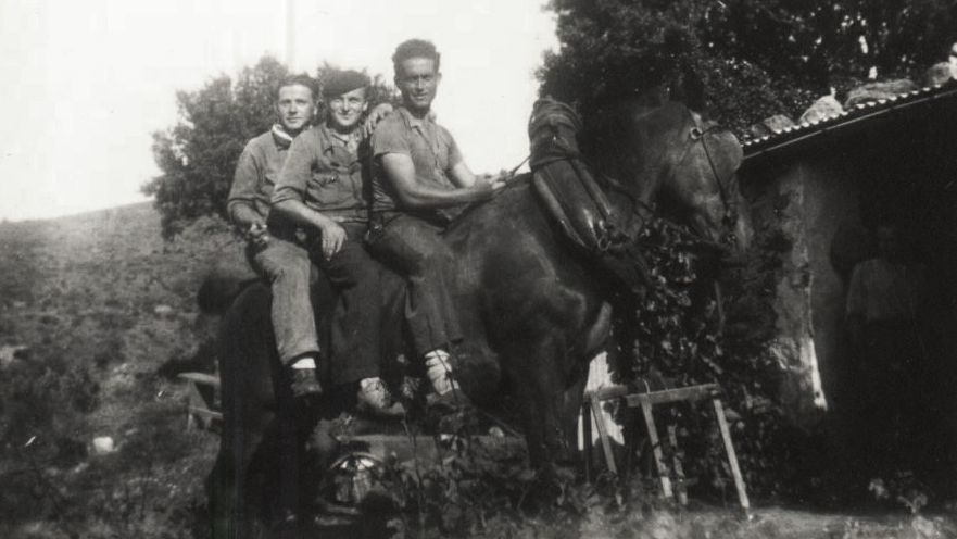 Vendanges 1943
